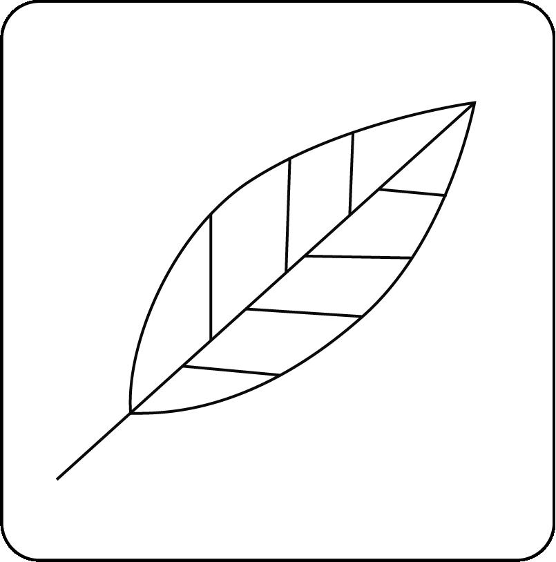 Medit-i500 8